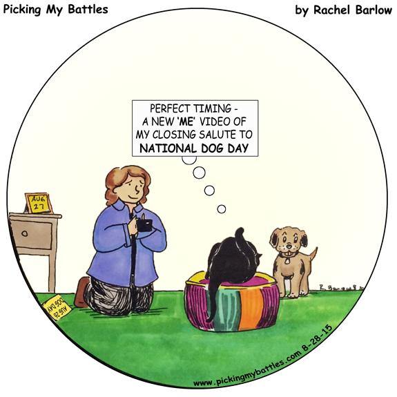 Picking-My-Battles--NATional-Dog-Day-Master-Round2