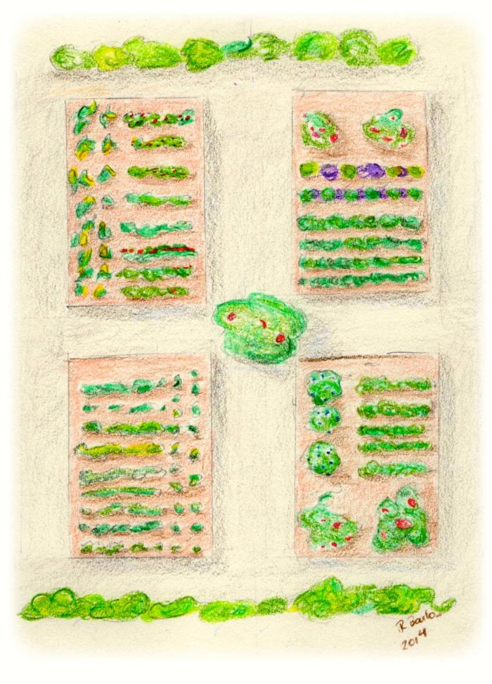 garden plan 2014