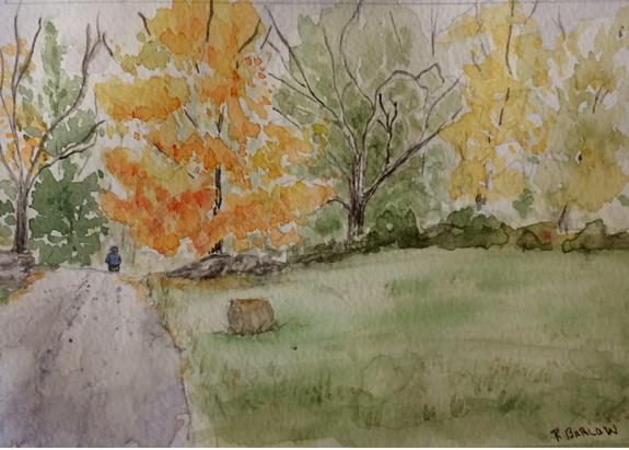 A Hay Oddity Watercolor, 5x7