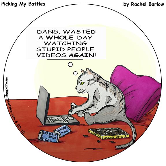 Picking-My-Battles--Stupid-People-Videos--web-round