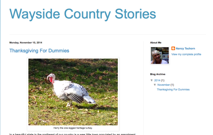 Wayside Country Stories