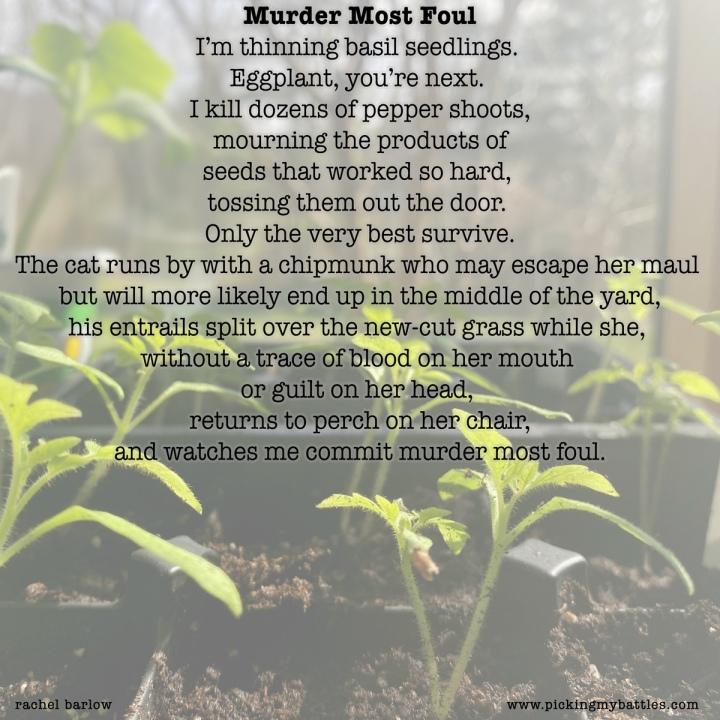 Poem: Murder MostFoul